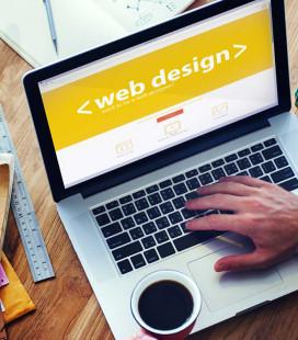 Disseny Web Bàsica