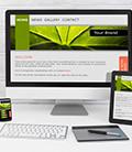 Pàgina web